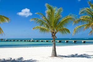 Medicare Advantage Plans in Florida